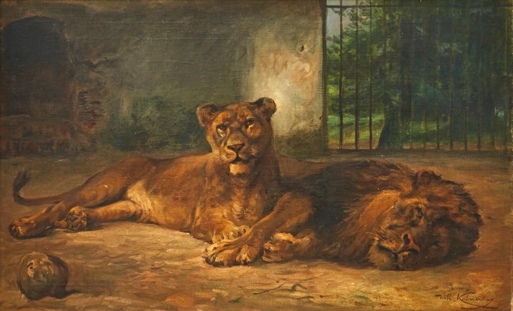 WILHELM KUHNERT (1865 Oppeln - 1926 Flims) - Ruhende Zirkuslöwen, Öl/Lwd., signiert, ca. 1910