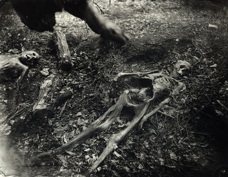 "Fotografi från ""The Body Farm"", ur serien ""What Remains"". Foto: sallymann.com"