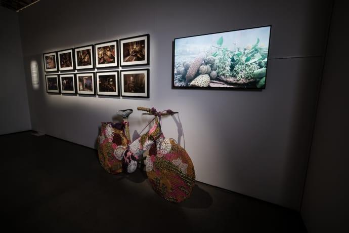 Ett av den polsk-amerikanska konstnärinnan Oleks verk. Hon deltar med bland annat en karusell helt täckt av virkningar och en videoinstallation av verket ''In the blink of an eye'', ursprungligen uppfört på Avesta Art