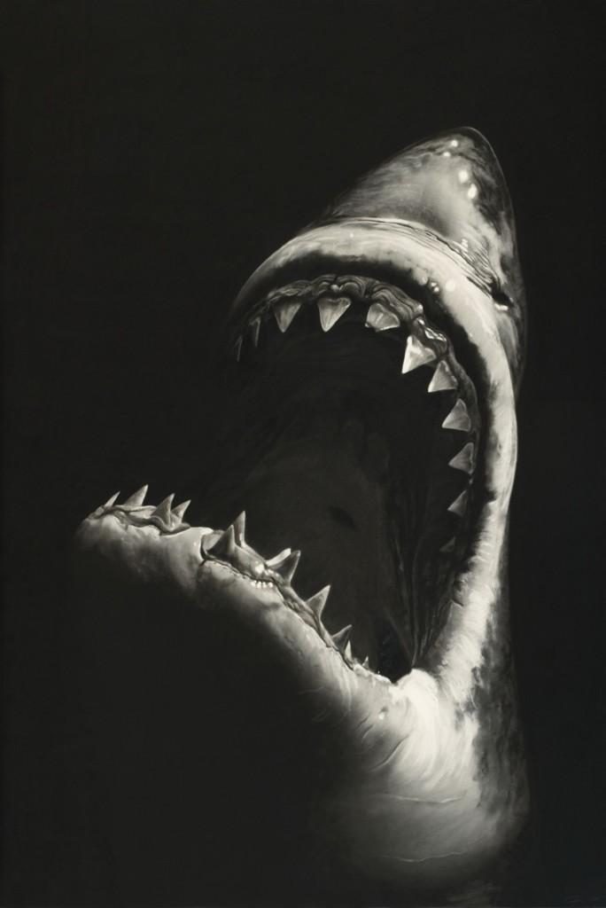 Robert Longo, Untitled (Shark 7) 2008