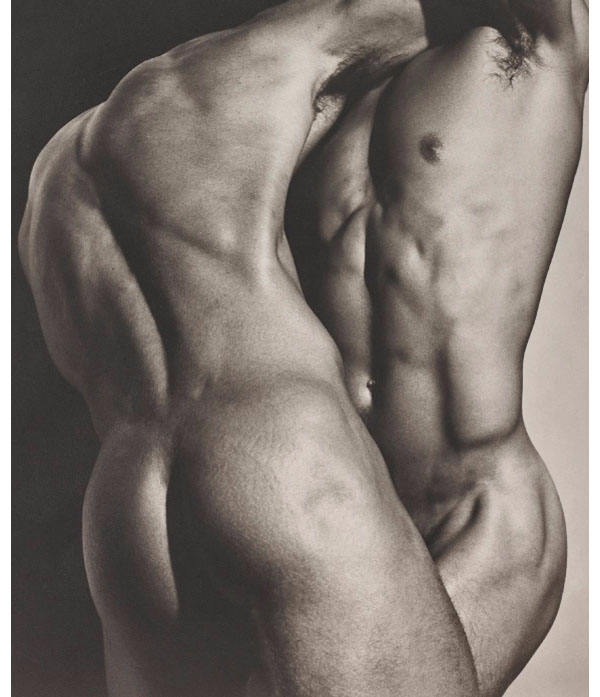 "Herb Ritts, ""Wrestling torsos"". Foto: Phillips."
