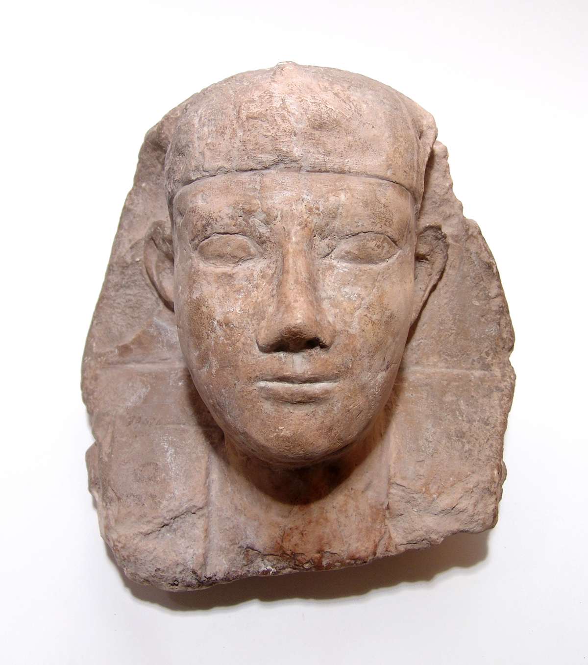 Egyptian limestone head from a Sphinx