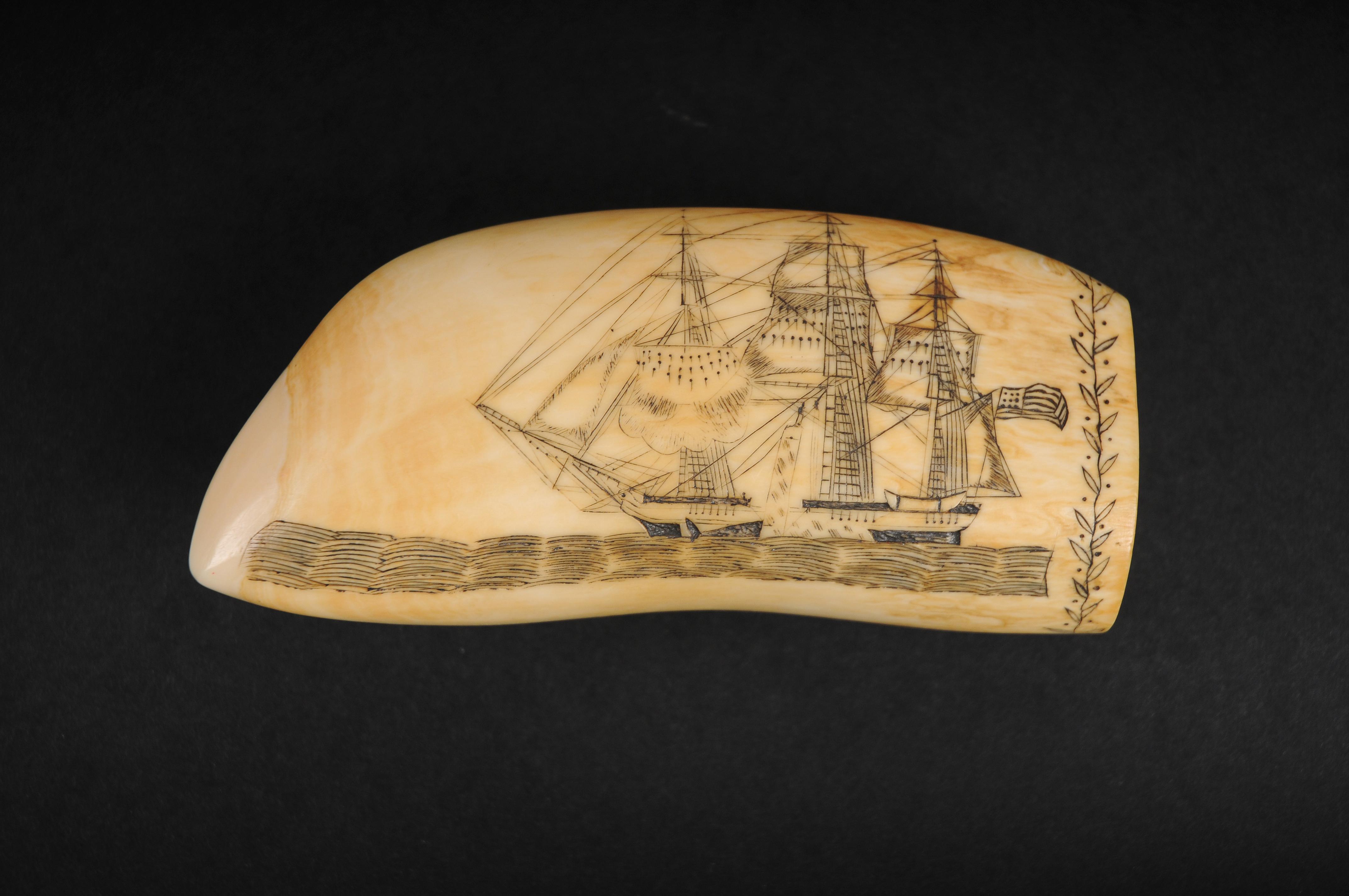 NHA_Edward Burdett_Engraved Whale's Tooth