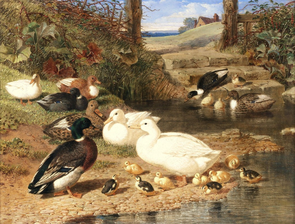John Frederick Herring Senior, 'Ducks with their Ducklings on a Pond', 1864