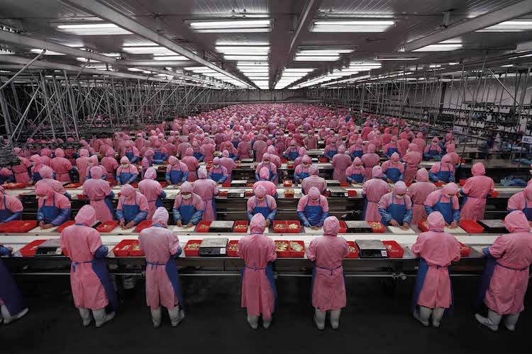 Edward Burtynsky Manufacturing #17 Utrop: 211 000 SEK Phillips