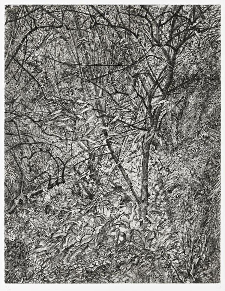 Lucian Freud Garden in Winter, Utrop: 629 000 SEK Phillips