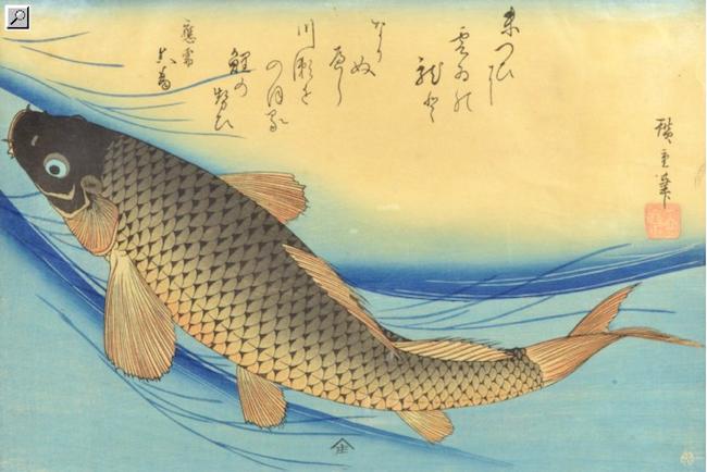"""Till storfiskaren: Inte så långt från Kina kommer färgträsnittet efter den japanske konstnären Utagawa Hiroshige. Motivet är hämtat ur sviten """"uozukushi"""" som illustrerar alla fiskarter. Bladet kommer från en utgåva från 1900-talets första hälft. Ropas ut för 1 000 kronor"""