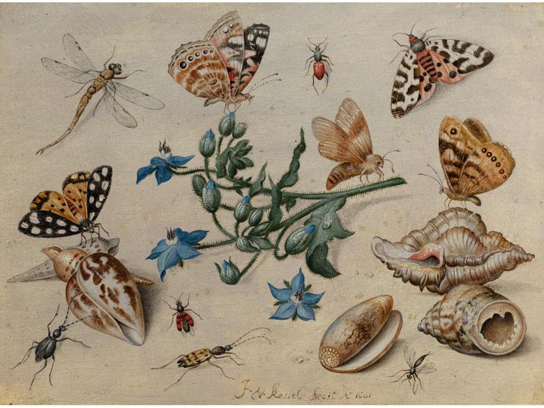 JAN VAN KESSEL D. Ä. (um 1626 Antwerpen 1679) - Schmetterlinge, Muscheln, Insekten und Blütenzweig, Öl/Eichenholz, signiert und datiert, 1661