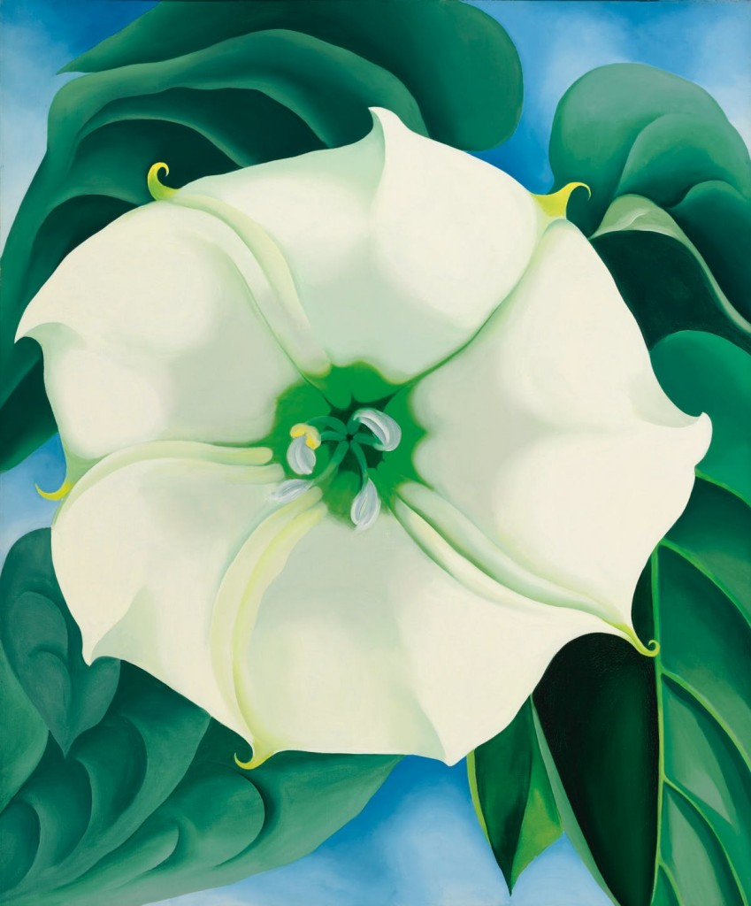 Jimson Weed:White Flower No. 1. Image via Barnebys