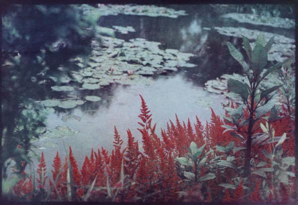© Bernard Plossu, Chez Monet, le jardin de l'autre côté, Giverny, juin 2011