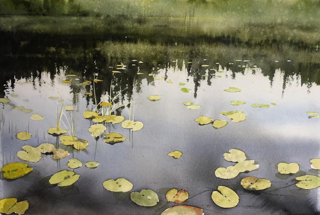 Art Events Nordic - Peter Eugen Nilsson, Näckrosor Vallsjön, akvarell, 76x56cm, 16.000:-