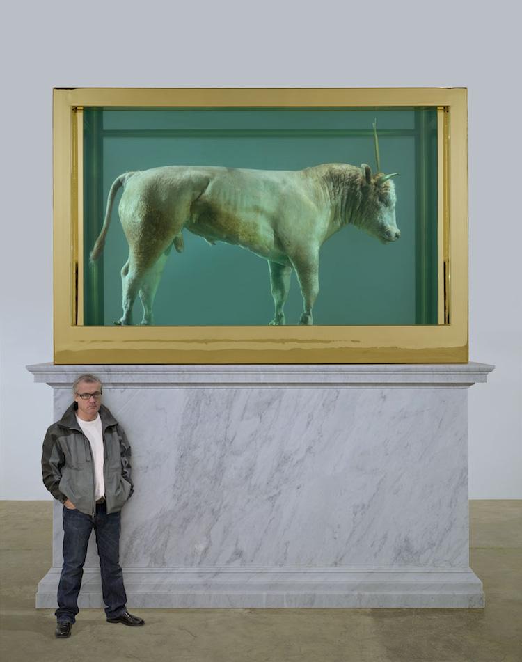The Golden Calf av Damien Hirst