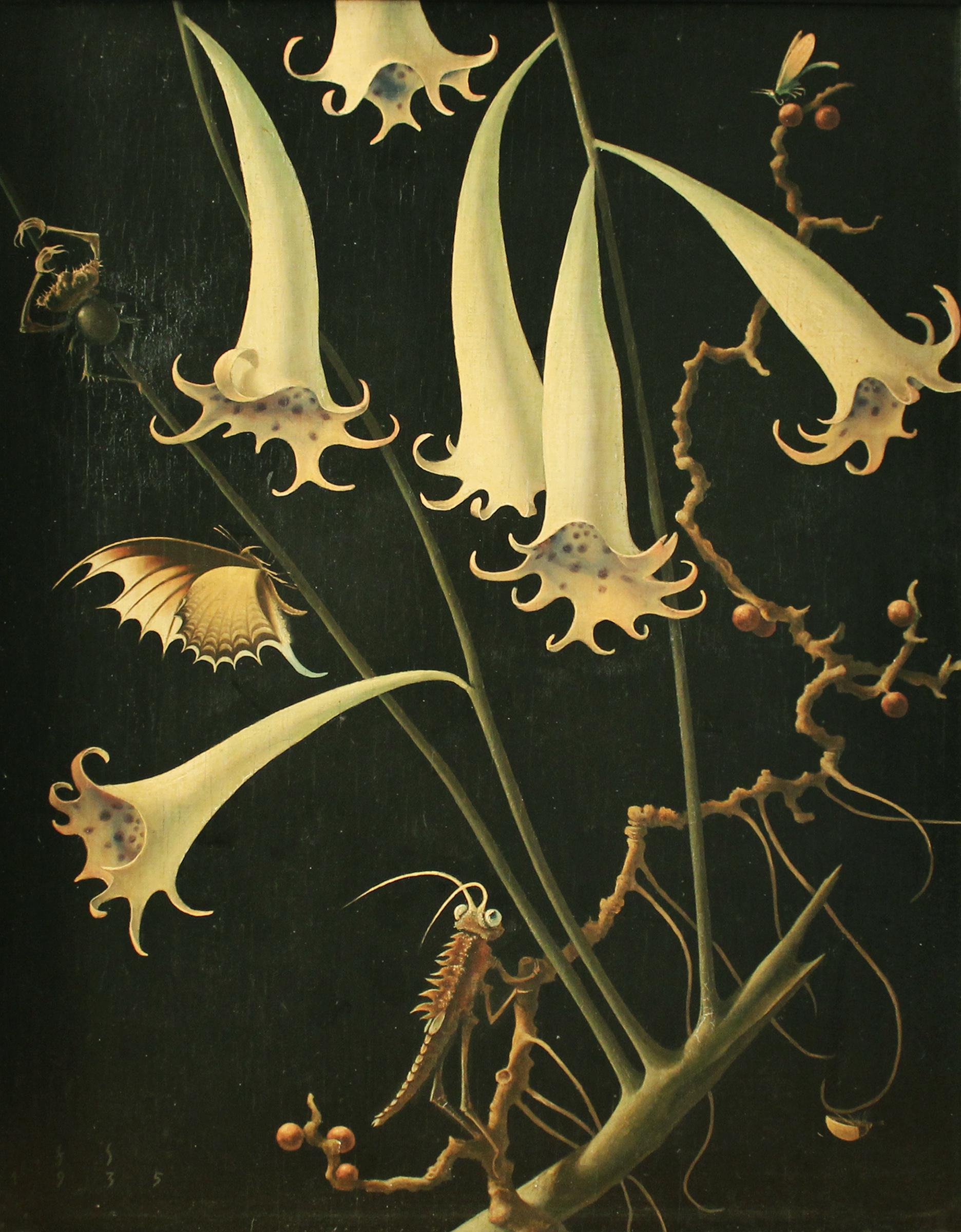 'Blüten und Insekten Nr. 3' par Franz Sedlacek