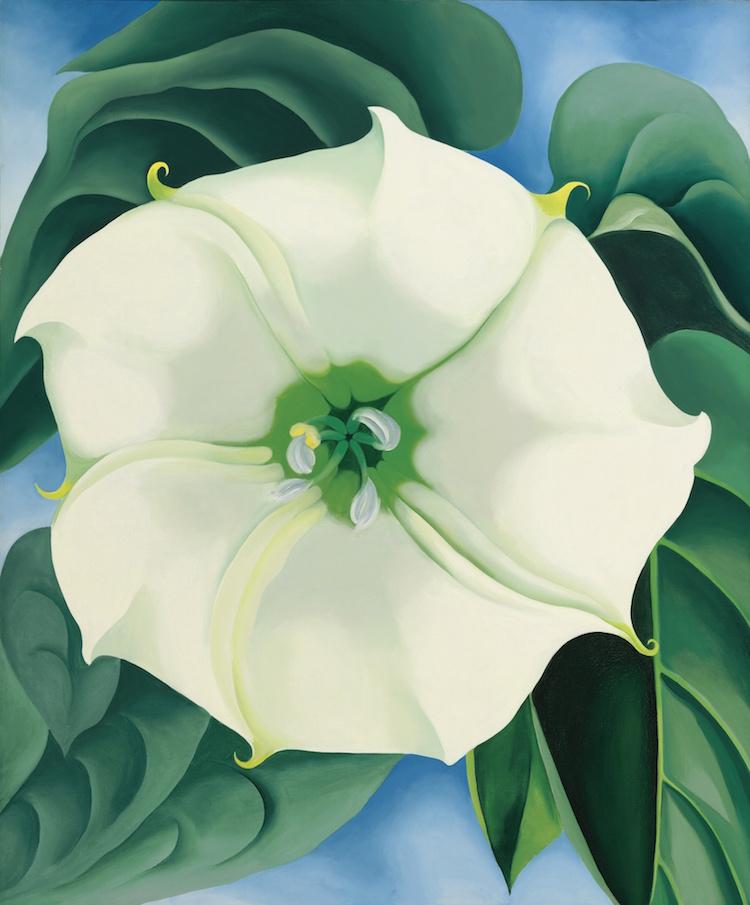 GEORGIA O'KEEFFE. JIMSON WEED/WHITE FLOWER NO. 1, 1932. Estimate $10,000,000 — $15,000,000. Photo via Sotheby's