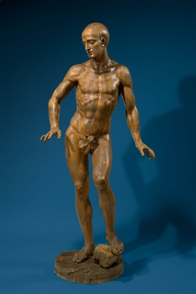 FRANZ XAVER SEEGEN (1723 - Vienna - 1789) - Academic male nude model, linden wood, signed and dated, 1783