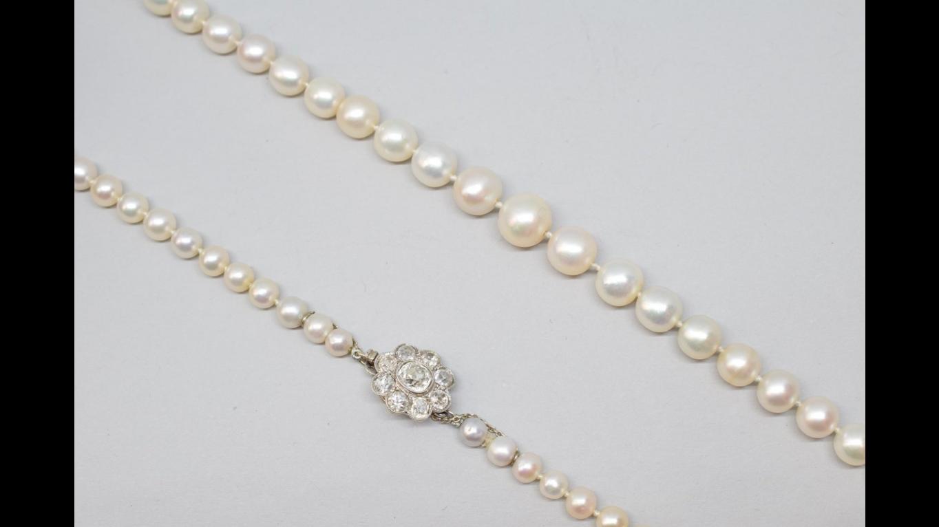 Collar de perlas con cierre de platino