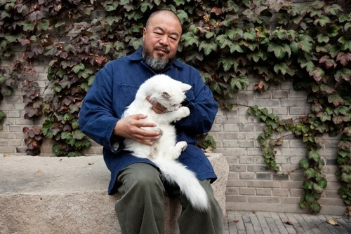 Ai-Weiwei-and-one-if-his-40-cats