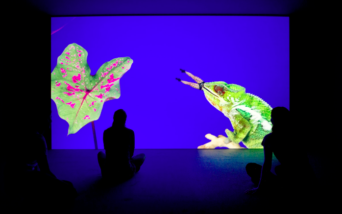 Bom Bom's Dream, 2016 by Jeremy Deller and Cecilia Bengolea Image courtesy the artists