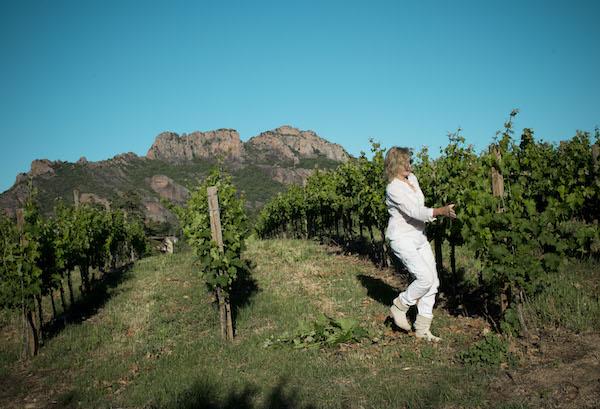 Christine von Eggers Rudd pysslar om vinrankorna.
