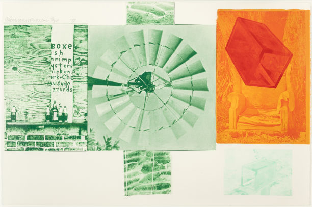 Robert Rauschenberg Lithograph (from the Glacial Decoy series), 1979 On sale at Heritage