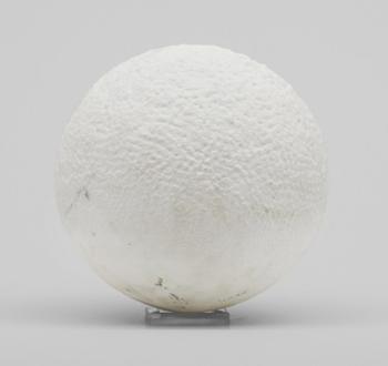 Gert-Marcus_Uppsala-Auktionskammare