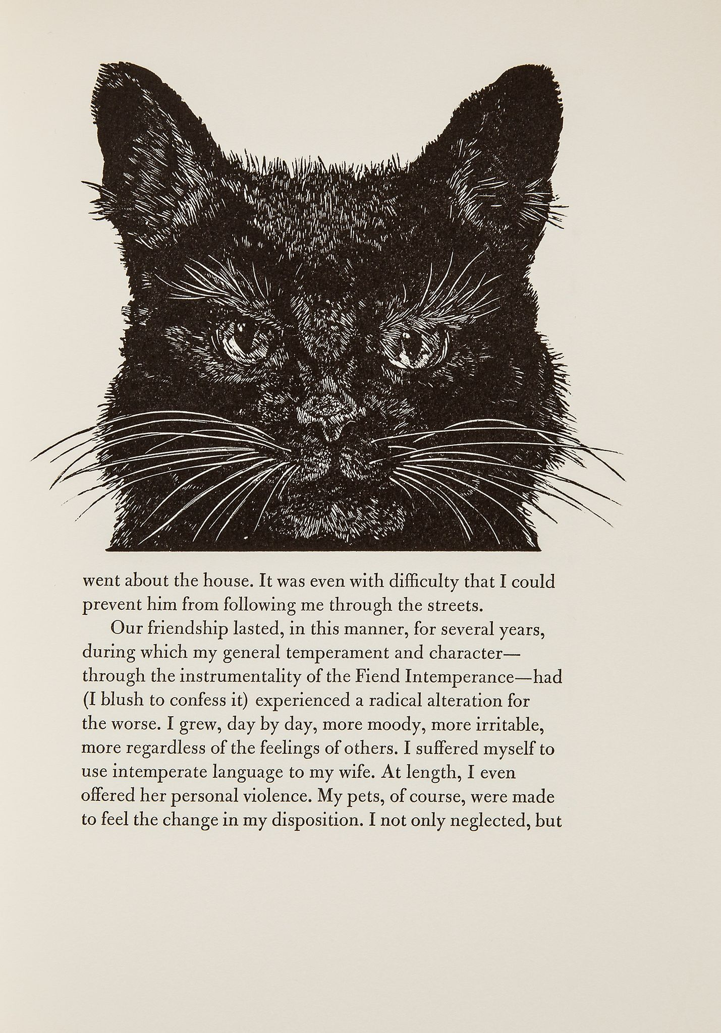 Noir chatte taquiner