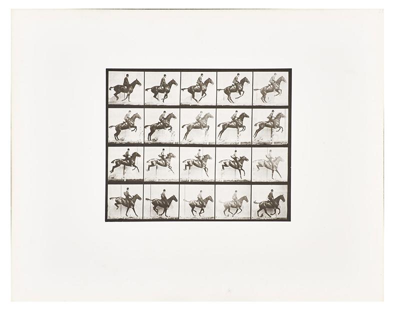 """Eadweard Muybridge, från serien """"Animal Locomotion"""". Utrop för samling bestående av 12 verk: 16 300 SEK."""