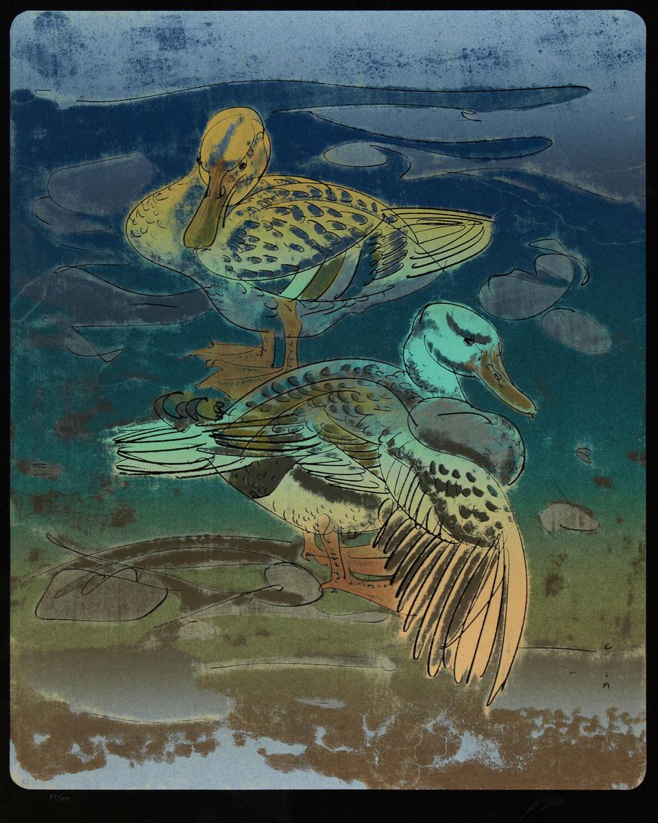 HANS ERNI (1909 Luzern 2015) - Entenpaar, Farblithografie/Bütten, 89/150, datiert 1989