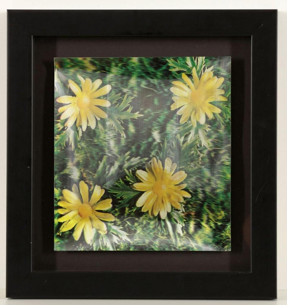ANDY WARHOL (1928 Pittsburgh - 1987 New York City) - Daisies, Dreidimensionale Farbfotografie, Stempel