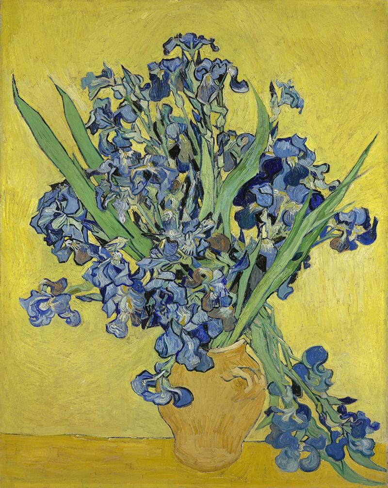 """Vincent van Gogh """"Irises"""", 1890 Foto: Van Goghmuseet."""