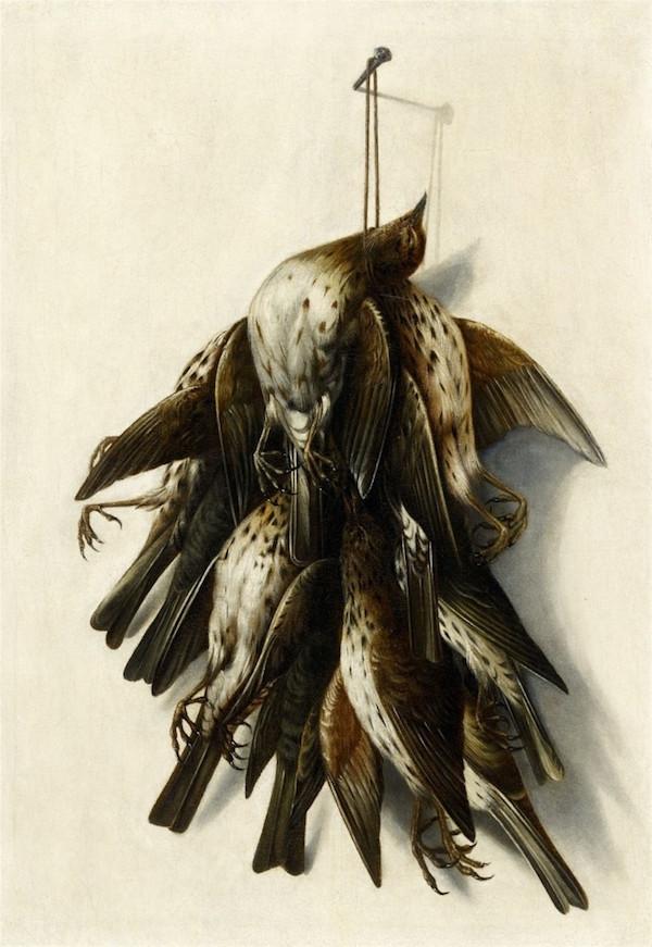 Jacobus Biltius (1633 Haag - 1681 Bergen op Zoom), tillskriven. Trompe-l'oeil med fåglar, olja. 50,5 x 35,5 cm.