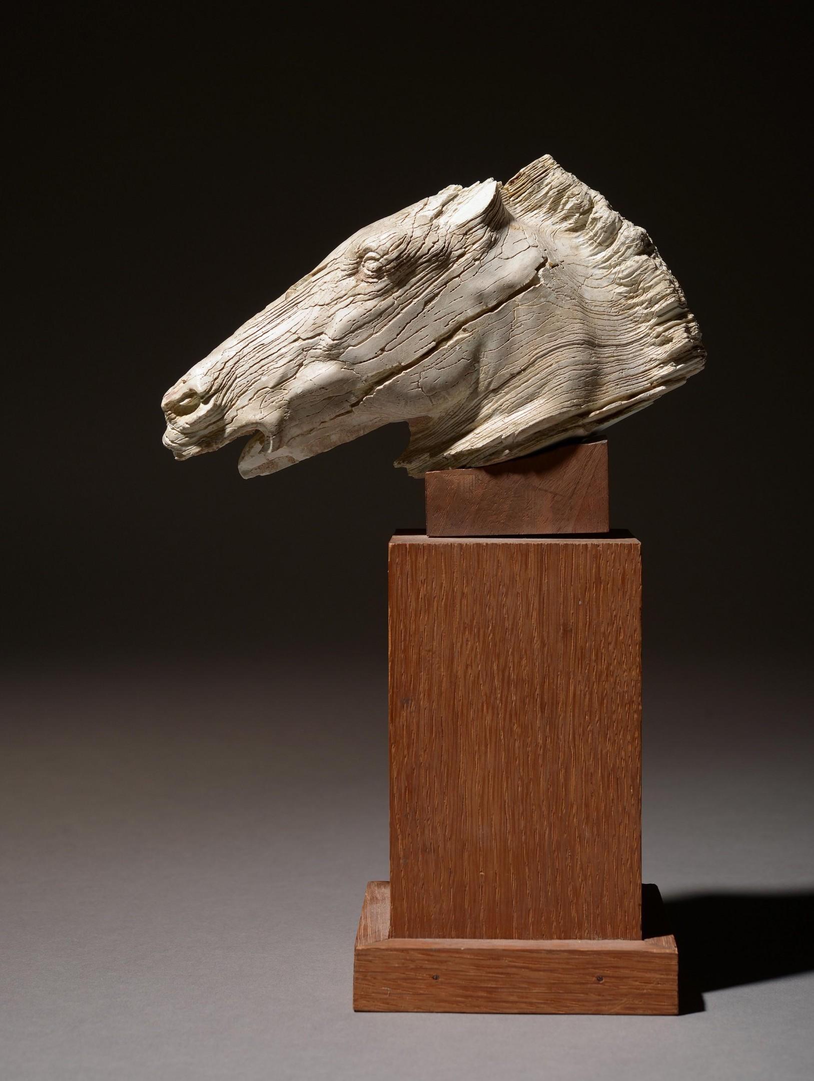 Rare tête de cheval en ivoire, image©HVMC