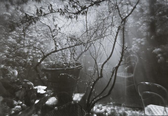 """""""The magic garden during a summer shower"""", silvergelatinprint av Josef Sudek från 1954-59. Såld på Sotheby´s"""