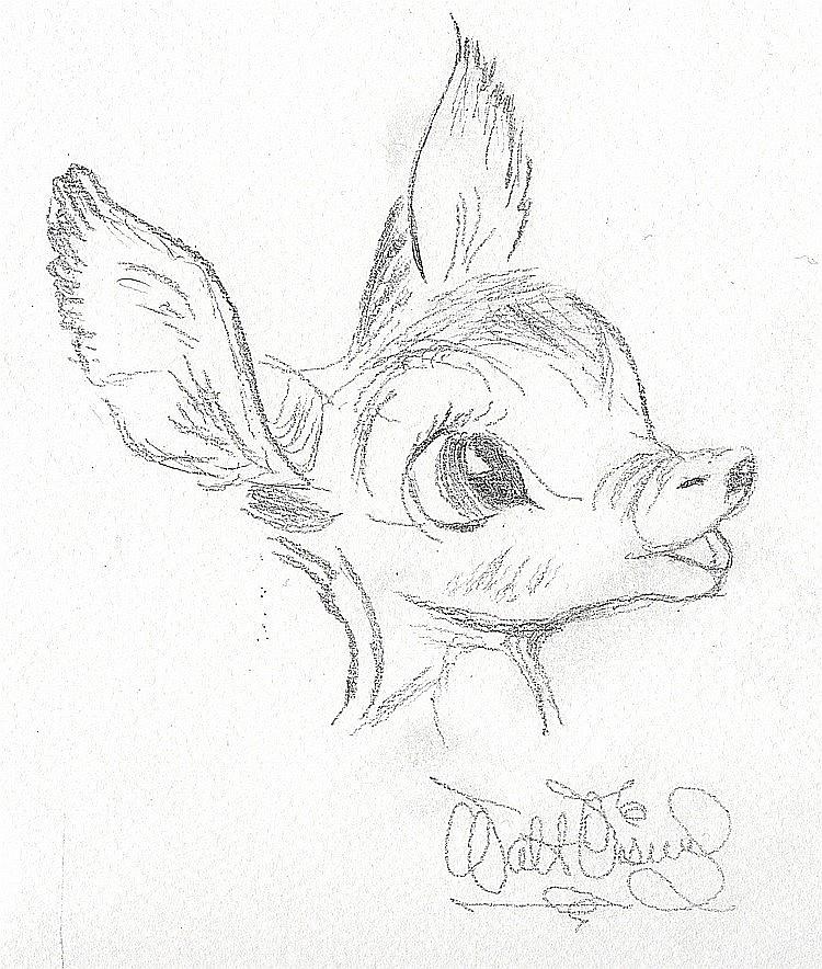 Dessin de Bambi par Walt Disney Simon Parr's