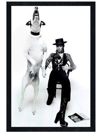 Photographie « Diamond Dog » par Terry O'Neil avec deux autres objets de collection