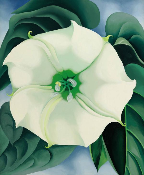 "Georgia O'Keeffe, ""Jimson Weed, vit blomma nr 1,"" 1932"