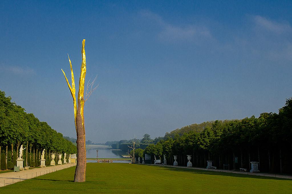PENONE à Versailles, Arbre Foudroyé Image via jeanclaudelafarge.fr