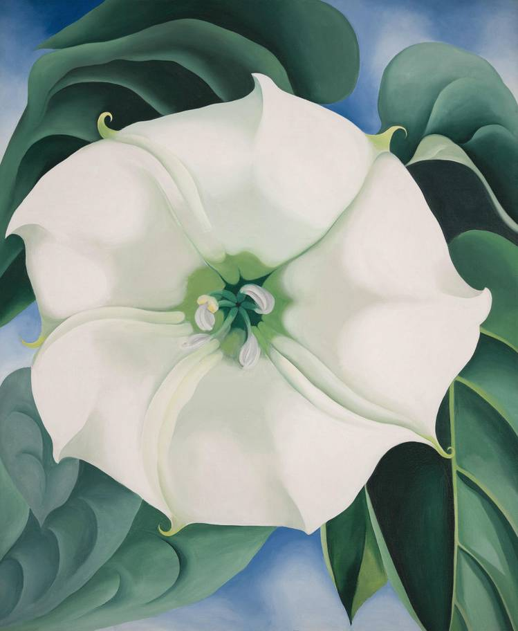 Georgia O'Keeffe, « Jimson Weed: White Flower No. 1 », 1932, image via The Independent
