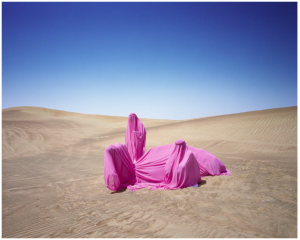 Still life with Camel, 2016 © Scarlett Hooft Graafland/Flowers Gallery