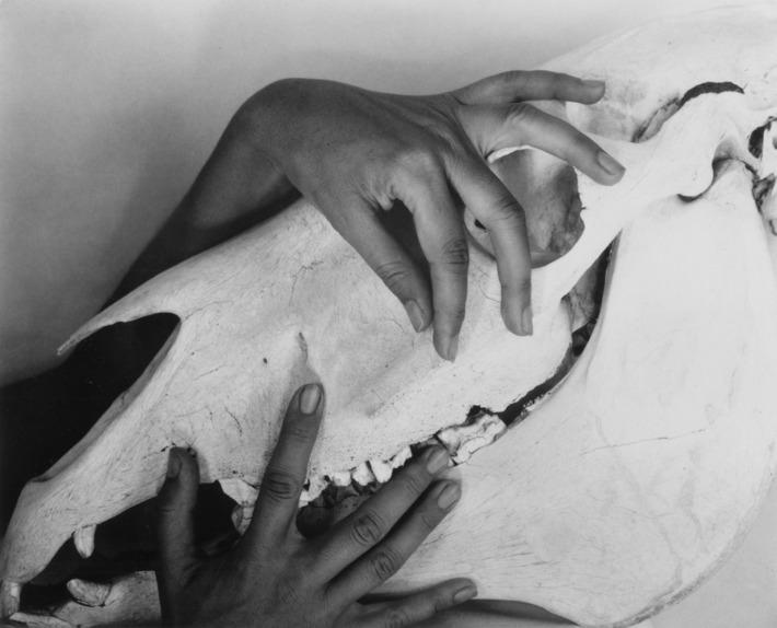 Les mains de O'Keeffe, photographie par Alfred Steiglitz, image ©Museum of Fine Art, Boston