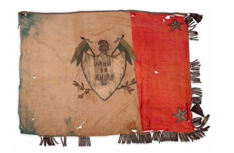 Flag covering the coffin of Emperor Napoleon I